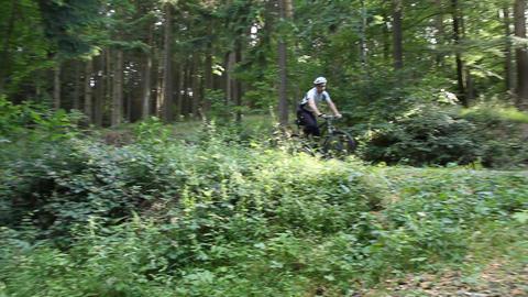 Mountainbiker fährt durch den Wald Footage