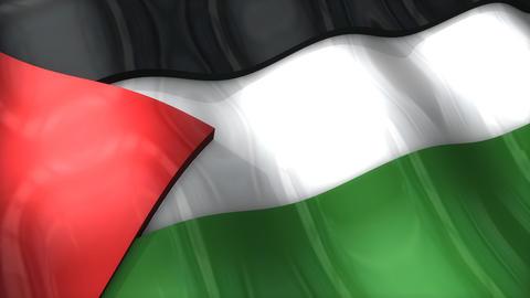 3D flag, Palestinian Animation