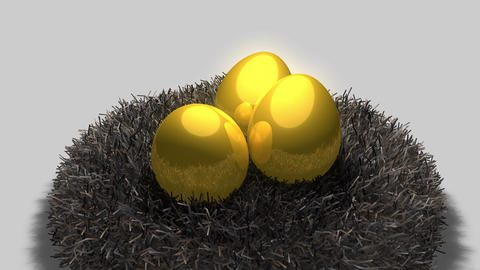 Golden egg and nest Animation