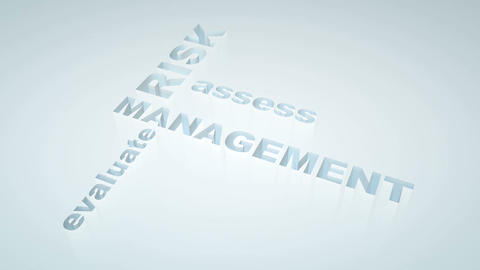 Risk management Animation