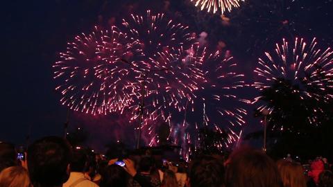 spectators watching fireworks Footage
