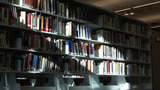 Books On Shelf In Public Library stock footage