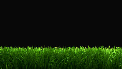 Grass Lower 3rd stock footage