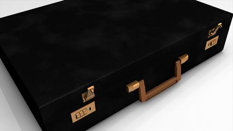 Money suitcase Animation