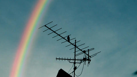 Rainbow Antenna stock footage