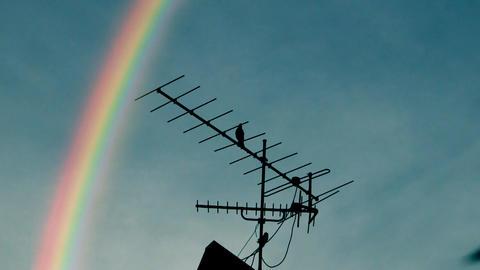 Rainbow antenna Animation