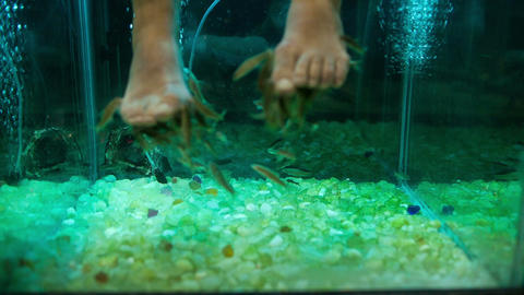Feet peeling with Garra Rufa fish Footage