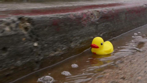 Yellow rubber duck floating down a street gutter a Footage