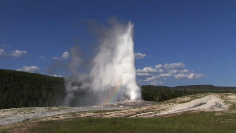 Old Faithful geyser erupts in Yellowstone National Footage