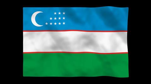 Flag A086 UZB Uzbekistan Stock Video Footage