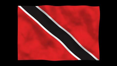Flag A092 TTO Trinidad and Toba Stock Video Footage