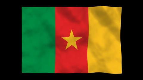 Flag A094 CMR Cameroon Animation