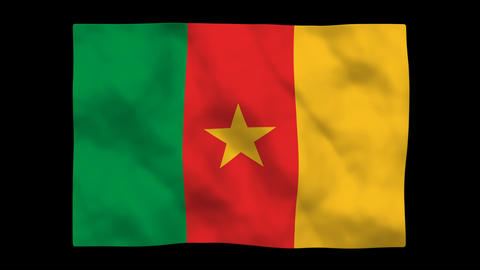 Flag A094 CMR Cameroon Stock Video Footage