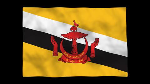Flag A106 BRN Brunei Stock Video Footage