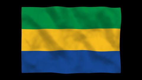 Flag A108 GAB Gabon Stock Video Footage