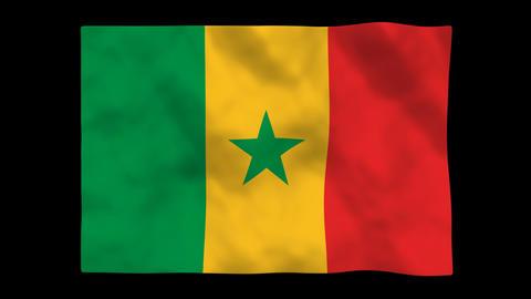 Flag A112 SEN Senegal Animation