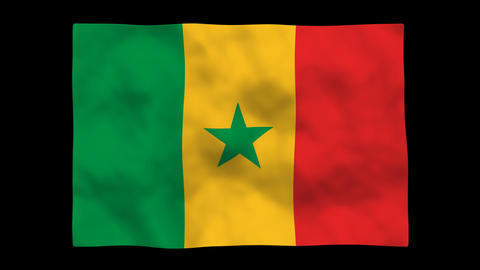 Flag A112 SEN Senegal Stock Video Footage