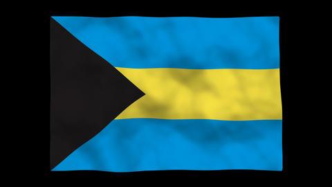 Flag A130 BHS Bahamas Stock Video Footage