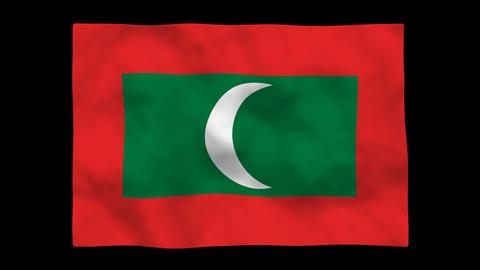 Flag A148 MDV Maldives Stock Video Footage