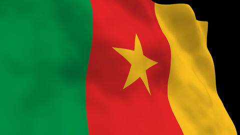 Flag B094 CMR Cameroon Stock Video Footage