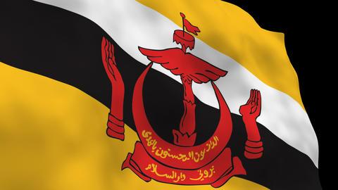 Flag B106 BRN Brunei Stock Video Footage
