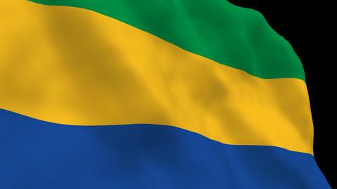 Flag B108 GAB Gabon Stock Video Footage