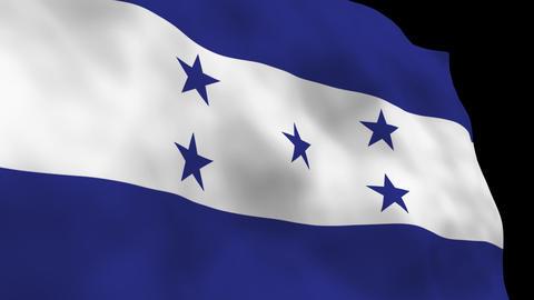 Flag B110 HND Honduras Stock Video Footage