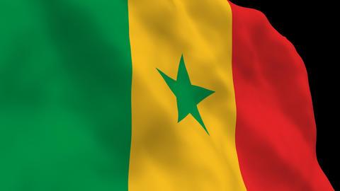 Flag B112 SEN Senegal Stock Video Footage