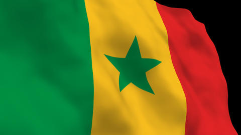 Flag B112 SEN Senegal Stock Video Footage