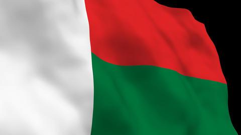 Flag B122 MDG Madagascar Stock Video Footage