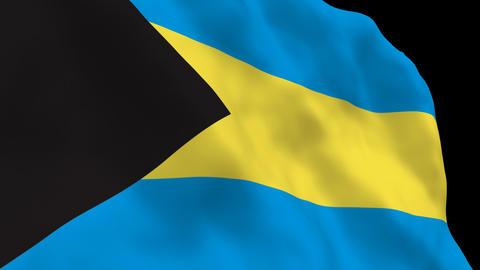 Flag B130 BHS Bahamas Stock Video Footage