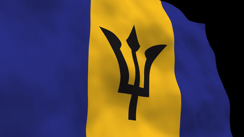 Flag B142 BRB Barbados Stock Video Footage
