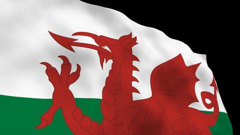 Flag B150 WAI Wales Stock Video Footage