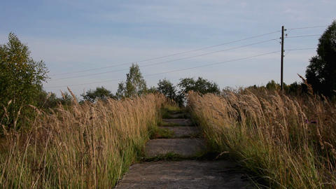 Old, destroyed road in grass field Stock Video Footage