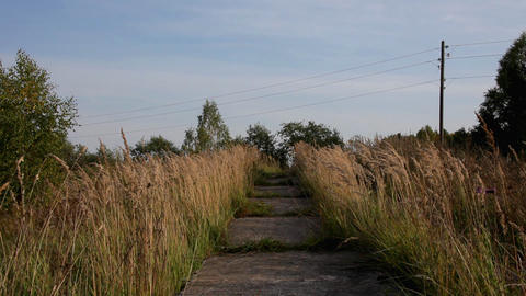 Old, destroyed road in grass field ビデオ
