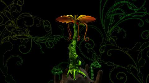 digiflower 7 Animation