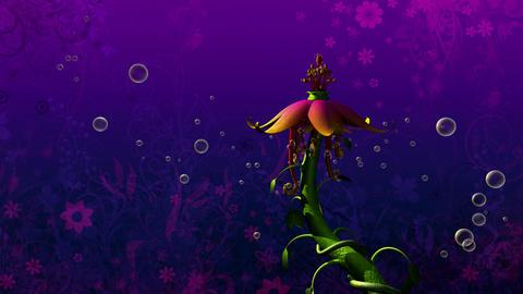flipside flower 2 Stock Video Footage