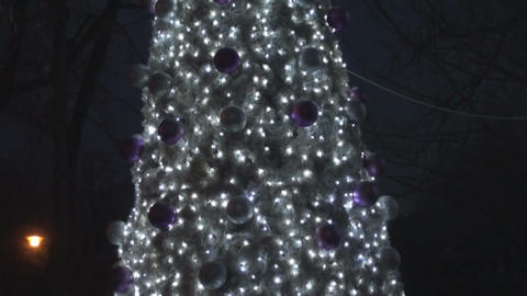 Big Christmas Tree In The Park Pan Shot stock footage