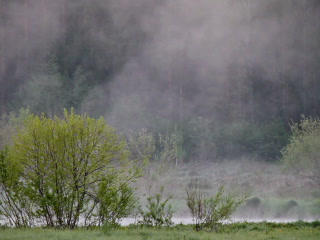 Mist Over Water. 320x240 stock footage