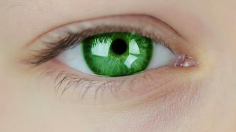 Multicolored Contact Lenses. Seamless Loop stock footage