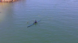 Man Rowing Lightweight Racing Scull- Long Beach CA stock footage