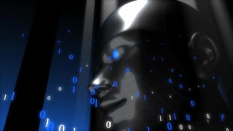 Digital human Animation