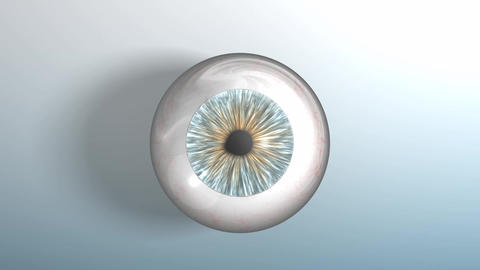 Human Eyeball Zoom-out With Alpha Matte stock footage