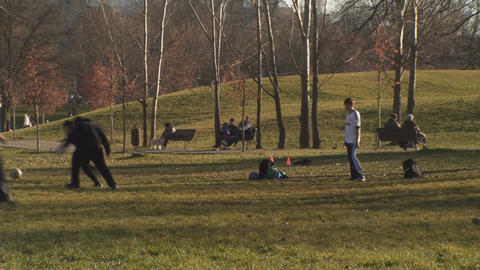 Family In The Park Playing Soccer stock footage
