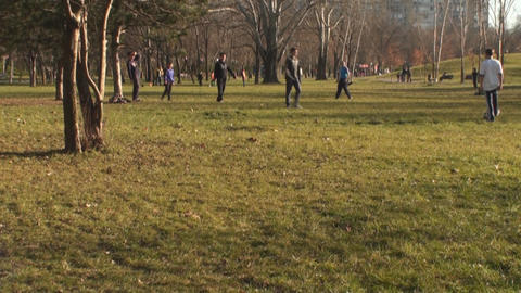 Family In The Park Playing Soccer Tilt-Shot stock footage