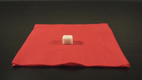 Dripping Medicine On A Sugar Cube Medium-Shot Footage