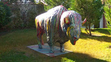 Painted Buffalo Sculpture Oklahoma City Riverwalk stock footage