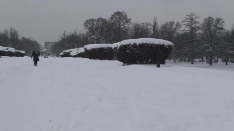 Frozen Lake In A Park Pan-Shot 2 Footage