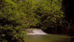 Small Waterfall In A Jungle In Thailand stock footage