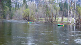 Rafting On Merced River Yosemite National Park stock footage